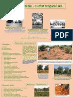 Agroforesterie_Climat-tropical-sec