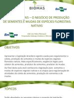 Aula 13_aspectos Legais_o Negócio de Produção de Sementes e Mudas de Espécies Florestais Nativas