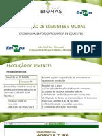 Aula 14_produção de Sementes e Mudas - Credenciamento Do Produtor de Sementes