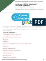 Cursos Online em Parceria com o MEC de Capacitação a Distância do Programa GOV.BR - GRATUITO _ Cursos Online EAD
