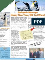 Jan 2011 Newsletter