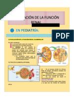 Evaluación de Función Renal Glomerular en Pediatria