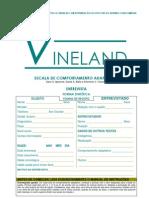 17-vineland-escala-de-comportamento-adaptativo