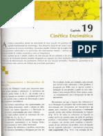 cinetica enzimatica 1