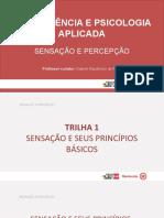 T1 POWER POINT SENSAÇÃO E SEUS PRINCÍPIOS SP