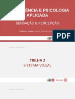 Trilha 2  POWER POINT sistema visual -