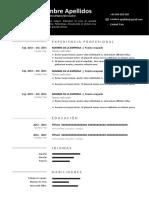 166 Modelo Curriculum Online Gratis Word Doc