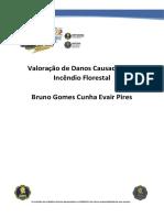 AO-19-Valoração-de-Danos-Causados-por-Incêndio-Florestal