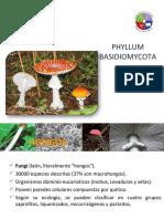 filobasidiomiceto-120107144341-phpapp01