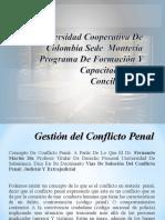 Gestion Del Conflicto Penal