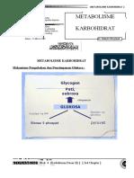 metabolisme-karbohidrat-slesai