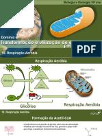 TROCAS GASOSAS PDF