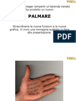 Palm Are