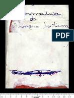 primeiro-livro-de-latinidade-contendo-grammatica