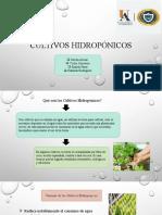 Cultivos Hidropónicos-1