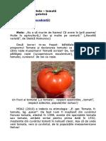 Jocuri de Cuvinte - Tomată