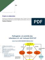 presentation_GRESA_final
