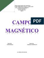 """""""Campo Magnético"""" BARBARA MARTÍNEZ 5A"""