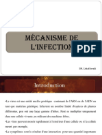 mécanisme de l'infection.pdf · version 1