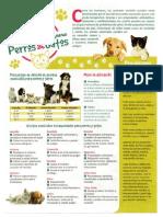 Perros&gatos