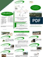 brochure bio version 11