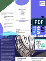 folleto salud mental ley 1616 de 2013