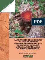 LIBRO  AMAZONIA EDSON F CARVALHO