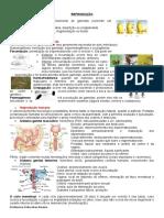 Reprodução e desenvolvimento embrionário