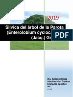 0000 Silvica de Parota (Enterolobiumcyclocarpum) 02