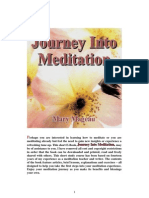 Journey Into Meditation