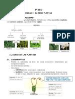1º Eso_unidad 8_reino Plantas_moodle_1ª Parte (3)