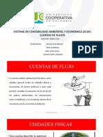 EXPO CUENTAS DE FLUJOS