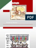 Presentacion medica -