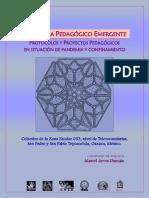 Programa Pedagógico Emergente Por Protocolos y Proyecto.
