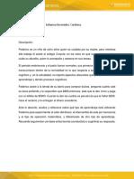Analisis de Caso - Aprendizaje Federico