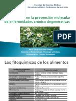 Sesión 6 Fitoquímicos_en_la_prevención_de_enfermedades Inflamatorias y cáncer I