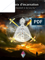SDH(système du design humain) - Les CroixdIncarnation