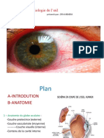 ophtalmo6an-anatomie_oculaire2019ababsa