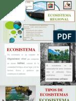 Ecosistema Regional Diapositivas
