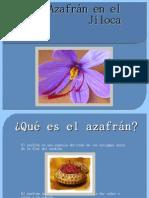 El azafrán_Eduardo_Pablo
