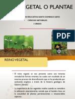 Reino_vegetal_5 grado