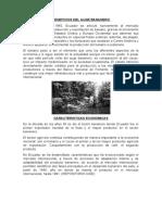 BENEFICIOS DEL AUGE BANANERO