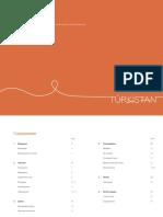 Turkistan Brandbook
