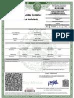 Acta-de-Nacimiento-ROPE910716MPLDRV08 (1)