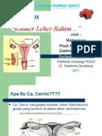 PKRS Ca Cervix