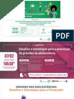 Webpalestra-07.02.2019