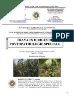 Travaux Dirigés Phytopathologie Speciale