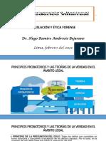 10123959_SEXTA CLASE-TEORIA DE LA PRUEBA.-MAESTRIA-DR. HUGO-2021.