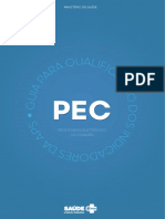 07144429-guia-preenchimento-pec-200115-indicadores-desempenho-2020