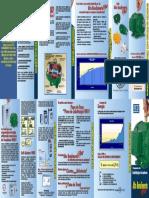 Folder Substituição Motores